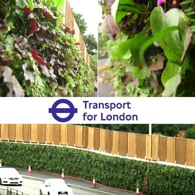Could you build a giant living green wall with TfL?