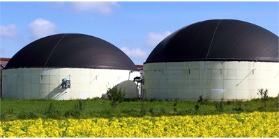 Biomass Engineer